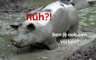 Blog: Ben jij een varken? (uit de shit, keuzes maken)